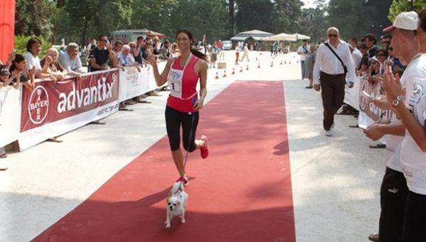 Dog race in Rome