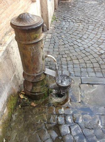 Rome's fountains go animal friendly