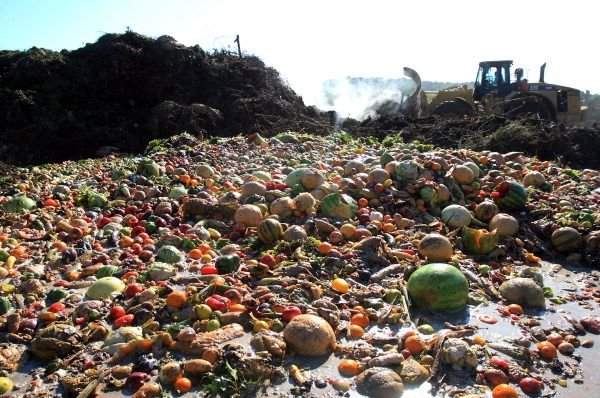 FAO says world wastes one third of food
