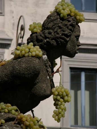 Wine festival at Marino
