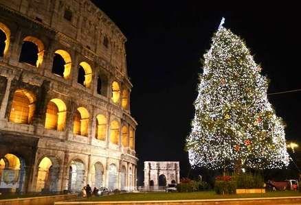 Rome's Christmas trees