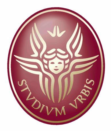 Sapienza Univeristy summer school