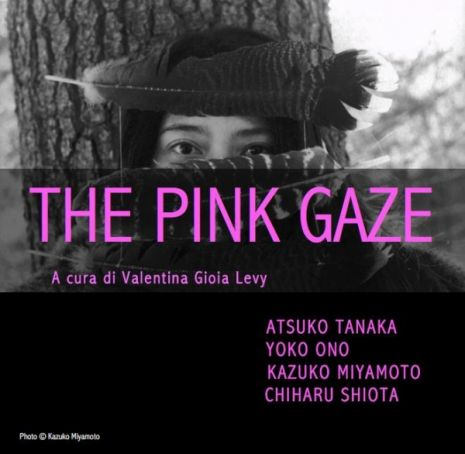 The Pink Gaze
