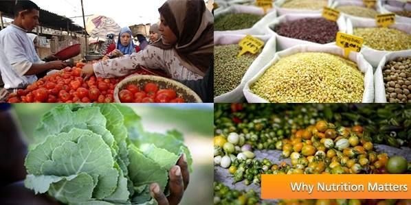 FAO and National Geographic launch photo contest