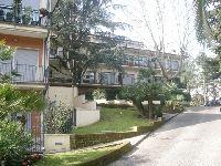 Camilluccia