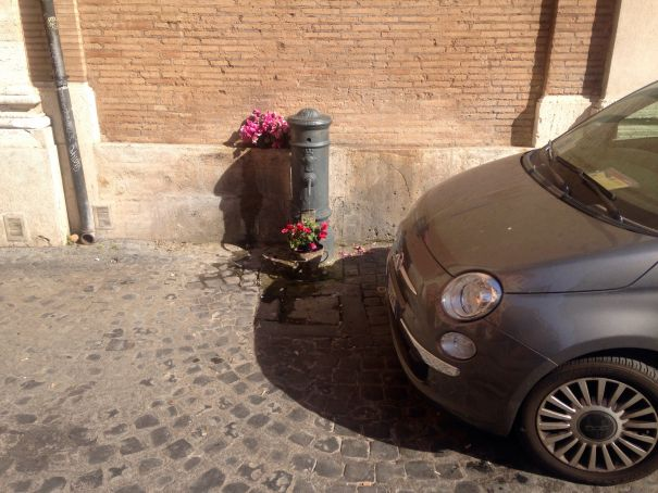 Flowers, nasone and 500...Rome