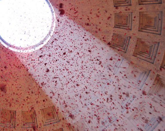 Rose petals at the Pantheon