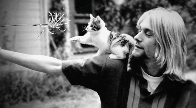 Cobain: Montage of Heck showing in Rome