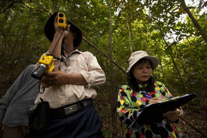 FAO and Google unite to monitor environment