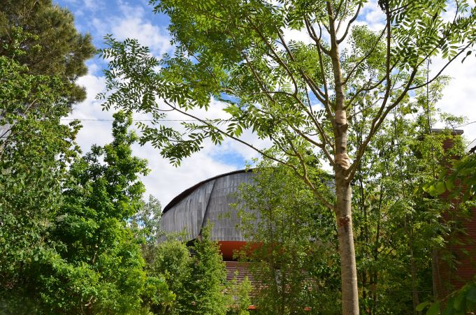 Rome auditorium transforms into forest
