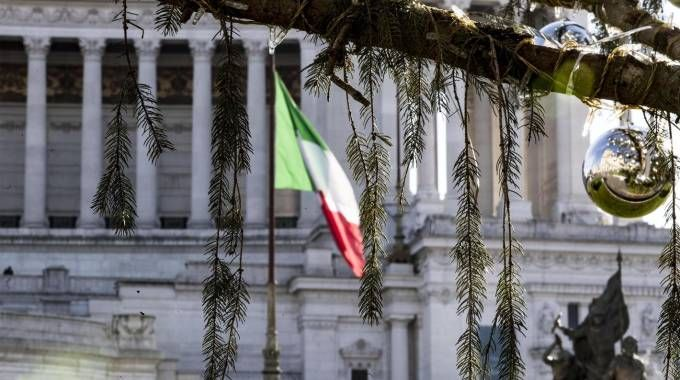Rome's dead Christmas tree reported to audit court