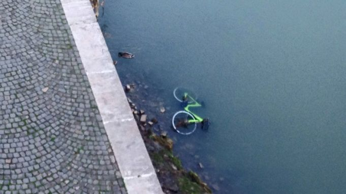 Gobee.bike leaves Rome over vandalism