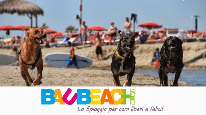 Bau Beach - Rome's beach designated exclusively for dogs