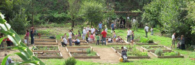 Hortus Urbis: Bees & Garden Friends