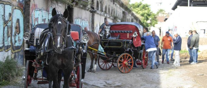 Rome to move horse-drawn carriages off the streets