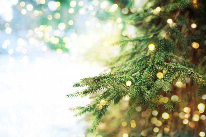 Rome lights up Netflix Christmas tree on 8 December