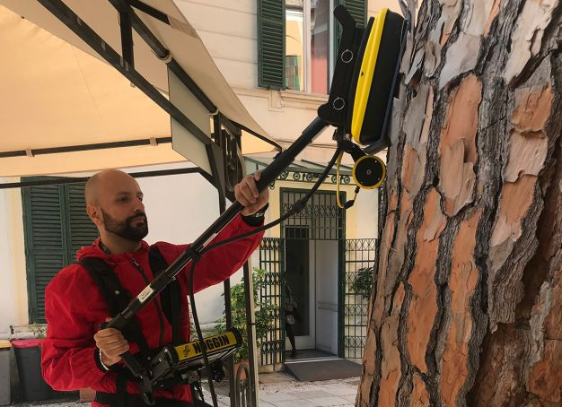 Protecting Rome from falling trees