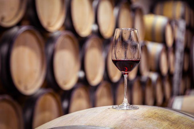 Novello wine close to extinction in the Castelli region