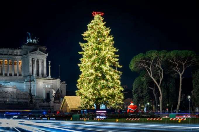 Spelacchio: Rome's Christmas tree returns to Piazza Venezia