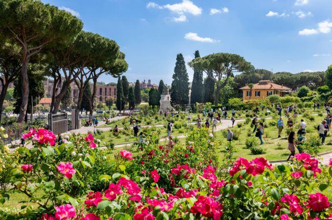 Rome plants hundreds of new roses in city's rose garden