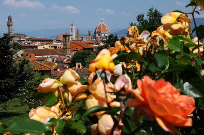 The Rose Garden in Florence