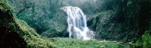 Discovering Lazio. Tivoli's wilderness garden - image 3