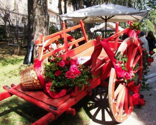 The secret camellia gardens of Velletri - image 2