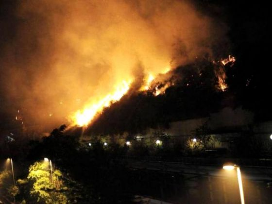 Bushfire in northern Rome - image 2