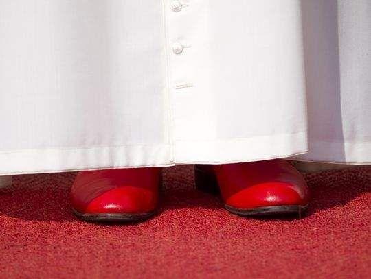 Final papal audience of Benedict XVI - image 4