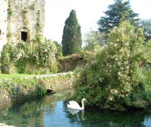 Ninfa Gardens - image 4