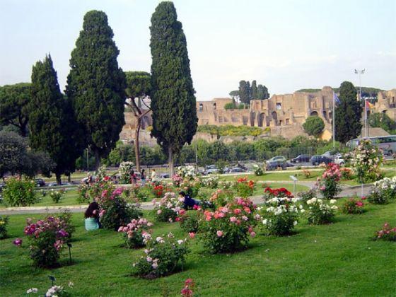 Rome's rose garden - image 2