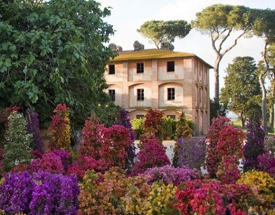 Floracult - image 2