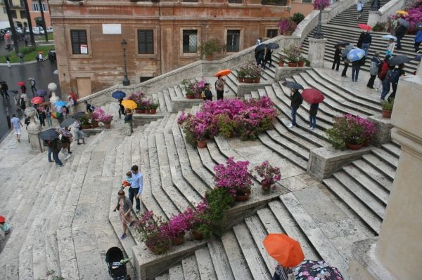 Rome's Spanish Steps in full bloom - image 2