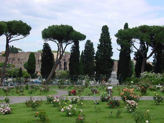 Rome's Roseto Comunale - image 4