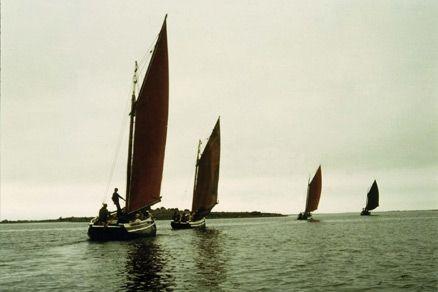 Launch of IrishFilmFesta - image 3