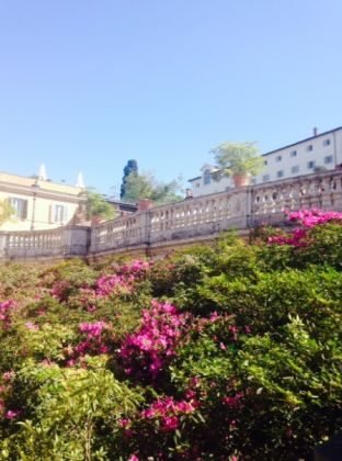 Rome's Spanish Steps in full bloom - image 3