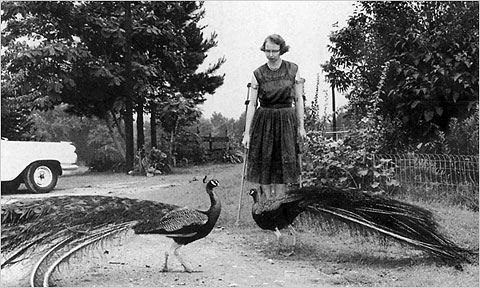 Flannery O'Connor symposium in Rome - image 3