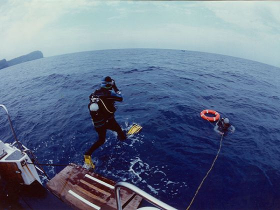 Diving - image 1