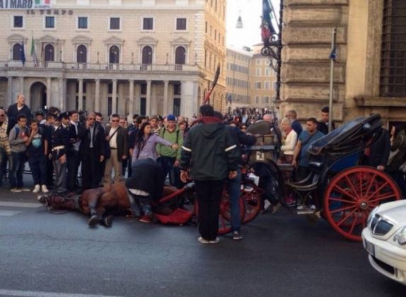 Horse collapses in central Rome - image 2