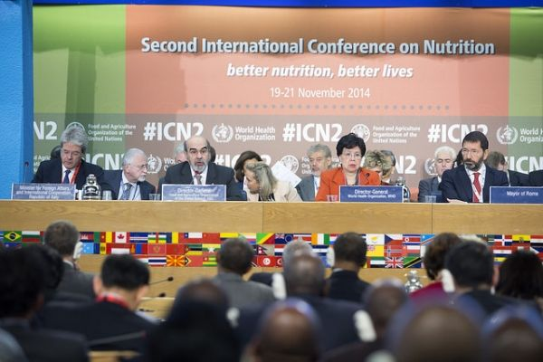 Global nutrition summit meets in Rome - image 3