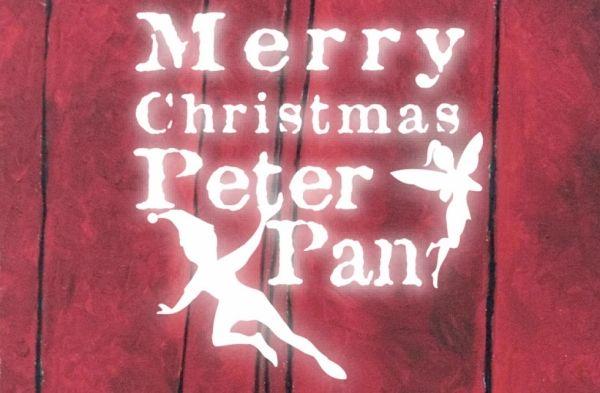 Merry Christmas Peter Pan - image 3
