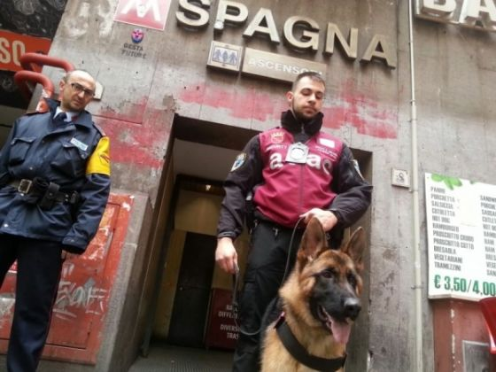 Guard dogs at Rome's busiest metro stations - image 1