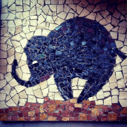 Studio Pilates Elephant - image 4