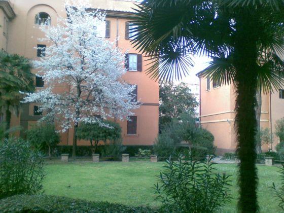 Cosy apartment Piazza Epiro - S. Giovanni. - image 5