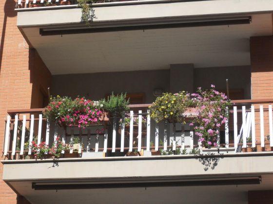 Residence -  apartment 1bdr 1 bthr terrace Roma EUR - image 9