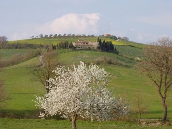 Tuscany, Montepulciano: portion of old farmhouse with pool - image 7