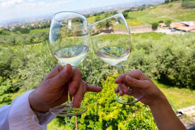 Wine Tasting, vineyard tour and lunch in Frascati - image 2