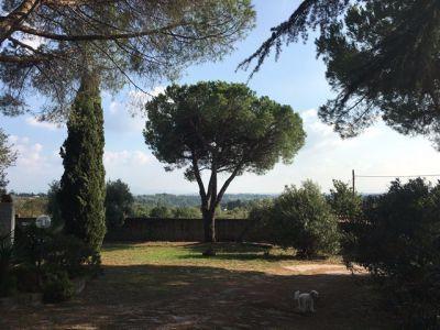 Sacrofano - Huge, 500m2 country villa renting - image 14