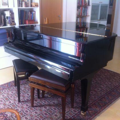 Grand Piano - image 1