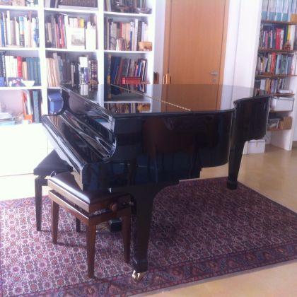 Grand Piano - image 3